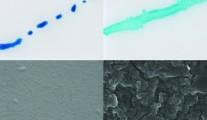 Výhody fluorácie